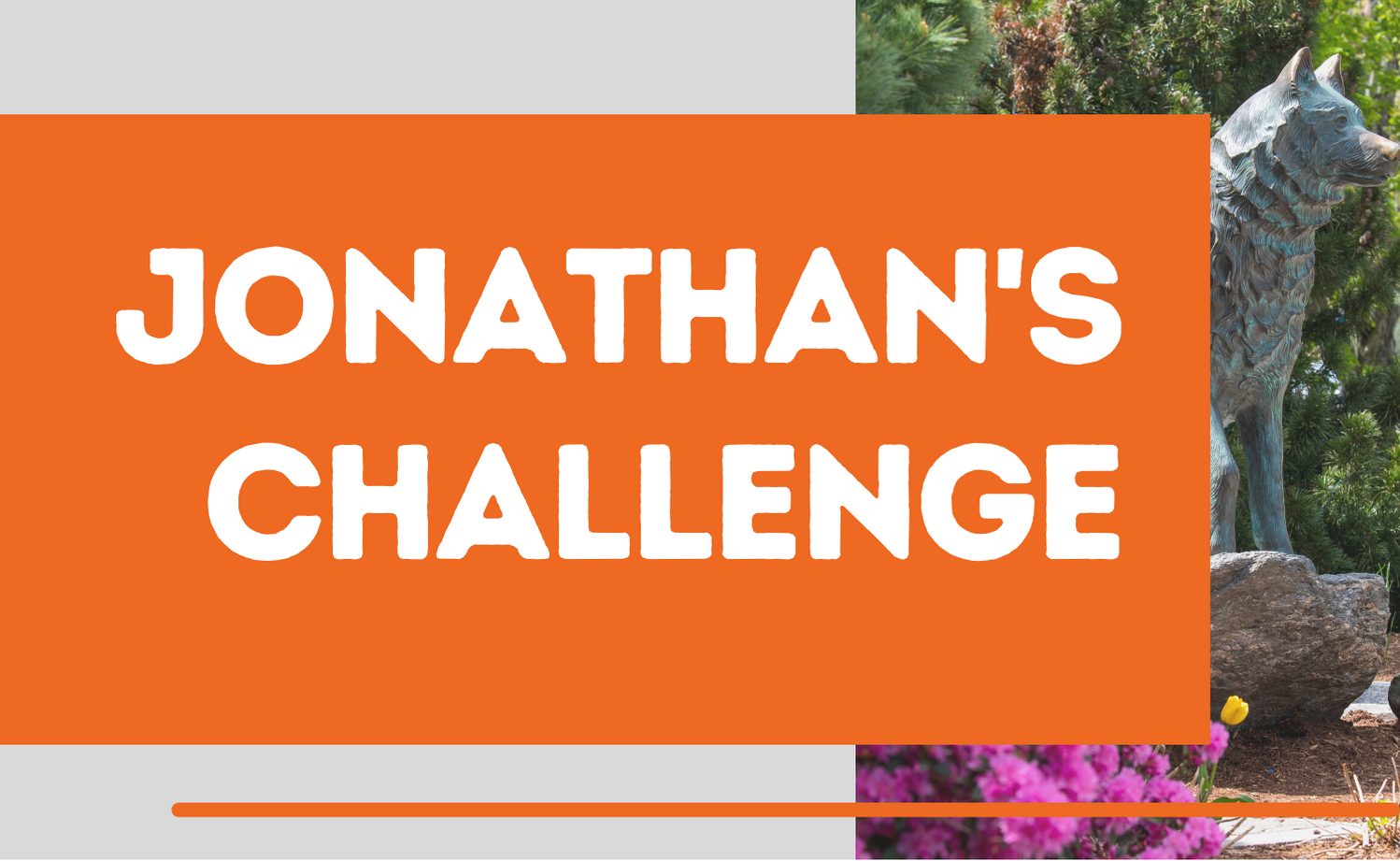 new button grey jonathan challenge